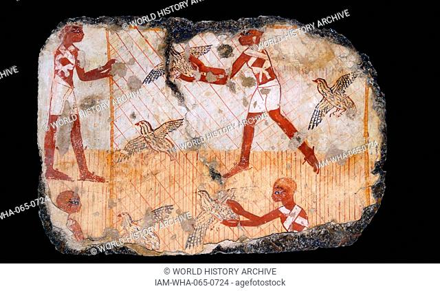 Fresco from the tomb of Nebamun, shows men catching Quails with a net. Thebes, Egypt 18th Dynasty, around 1350 BC