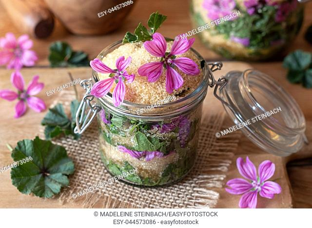 Preparation of herbal syrup against cough from wild common mallow flowers, leaves and cane sugar