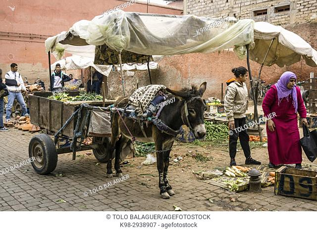 Souq of Marrakech, Morocco, Northern Africa