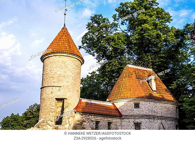 Medieval guardian wall in the old town of Tallinn, Estonia, Europe