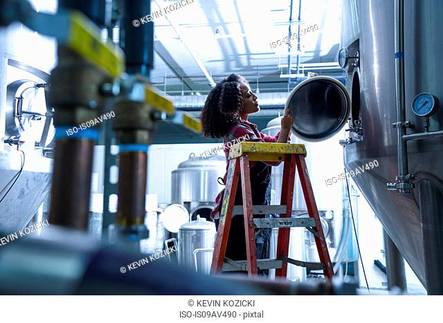 Mid adult woman in brewery on stepladder looking into conical fermentation tank