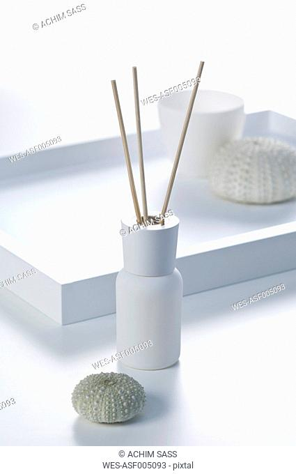 Scent bottle with aroma sticks in tray with sea urchin shell