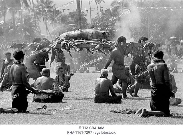 Suckling pig carried by native men at tribal gathering in Western Samoa, South Pacific