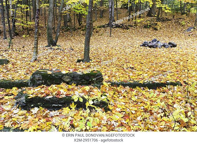 The general area of where the Civilian Conservation Corps Camp was located along Tripoli Road in Livermore, New Hampshire during the autumn months