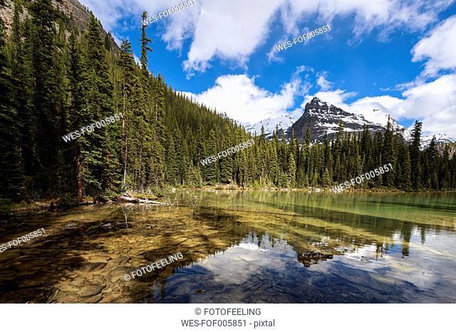 Canada, British Columbia, Yoho Nationalpark, Lake O'Hara and Yukness Mountain