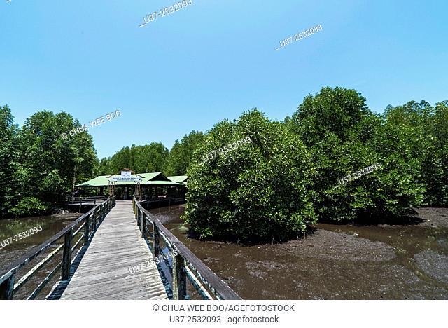 Kota Kinabalu wetlands, Sabah, Malaysia