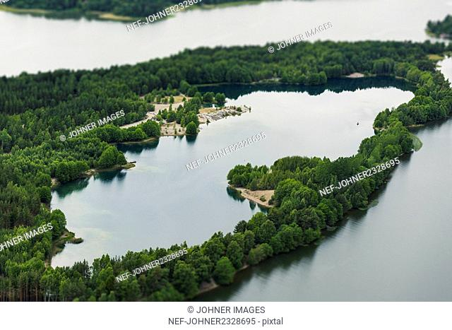 Forest at lake, aerial view
