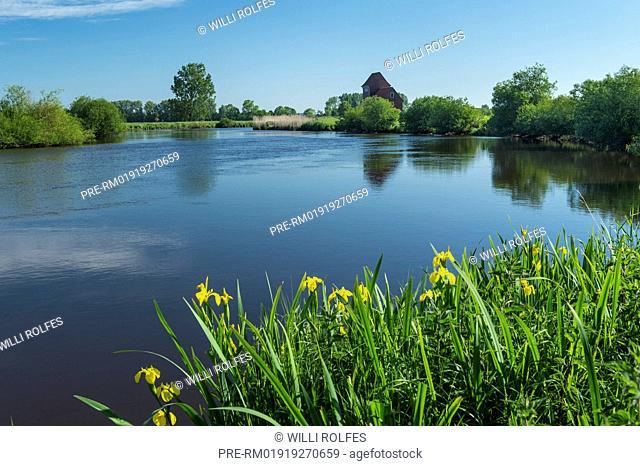 Spring at Jümme river, Landkreis Cloppenburg, Oldenburg Münsterland, Lower Saxony, Germany / Frühling an der Jümme, Landkreis Cloppenburg