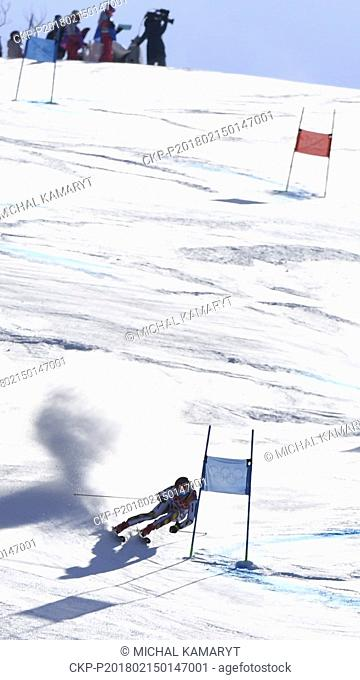 Czech alpine skier Ester Ledecka in action during the Women's Giant Slalom within the 2018 Winter Olympics in Pyeongchang, South Korea, February 15, 2018
