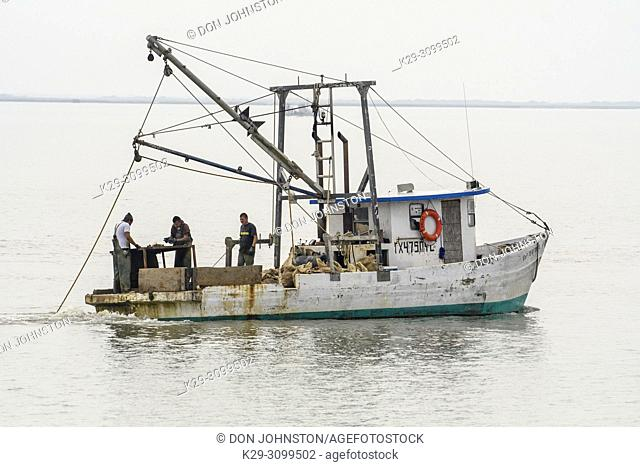 Workers sorting oysters on an oyster fishing boat in Aransas Bay, Rockport, Texas, USA