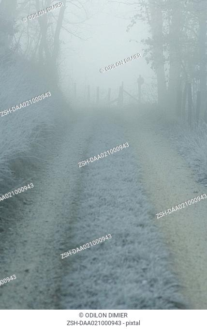 Frost covered rural road