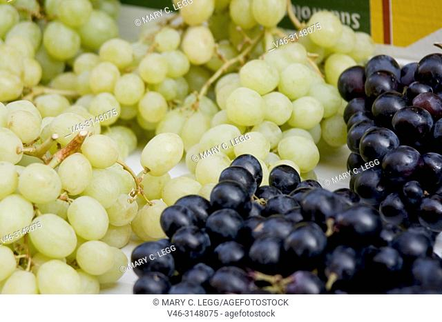 Green and Concord grapes. Fresh green and jelly grapes. Havelska Market, Prague