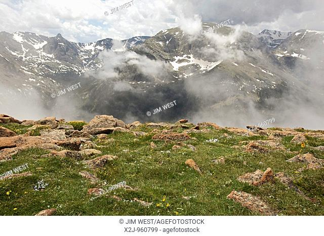 Rocky Mountain National Park, Colorado - The alpine tundra along Trail Ridge and a view of the Continental Divide