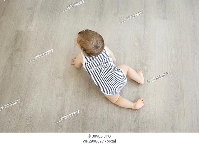 High angle view of baby boy wearing striped onesie crawling across hardwood floor