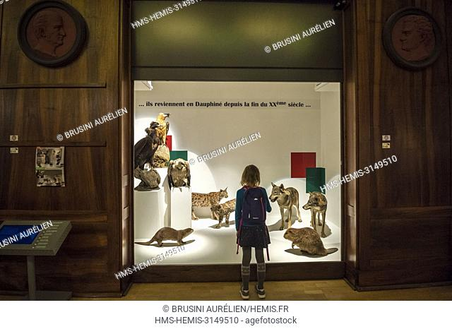 France, Isere, Grenoble Museum, wildlife showcase back in Dauphiné since the late twentieth century