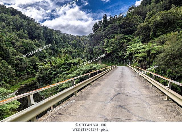 New Zealand, North Island, Taranaki, Forgotten World Highway