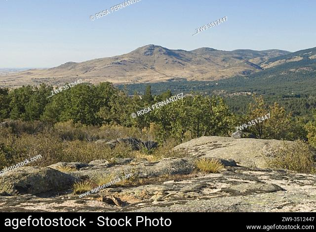 La Atalaya Peak and pine and oak forest at La Granja de San Ildefonso, province of Segovia, Castilla y Leon, Spain