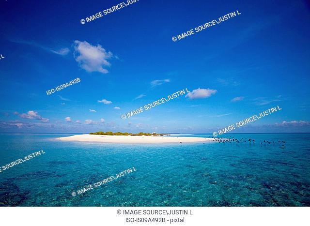 Sandbar in tropical water