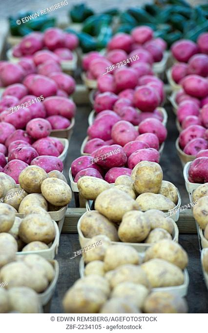 Produce organized and arranged at farmer's market