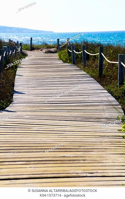 Boardwalk through protected dunes on the coast of the island of Formentera, Balearic Islands, Spain, Europe