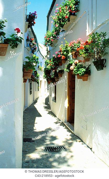 Narrow alleys loaded with geranium pots in old quartier 'Barrio de la Villa'. Priego de Córdoba. Andalusia. Spain