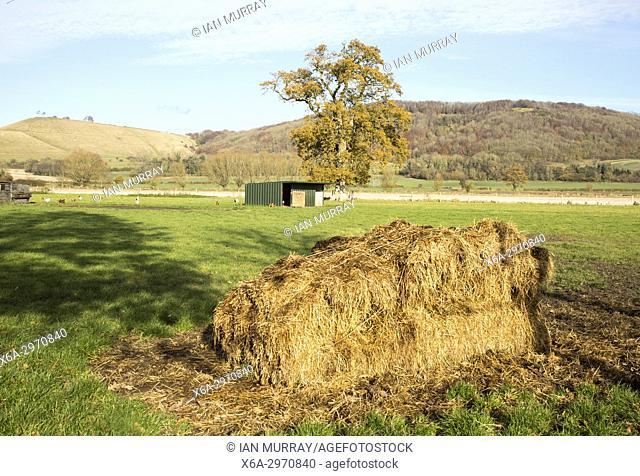 Farming landscape view chalk escarpment Oliver's castle, near Devizes, Wiltshire, England, UK from Rowde