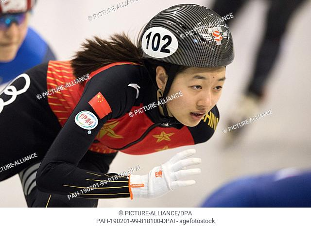 01 February 2019, Saxony, Dresden: Shorttrack: World Cup, preliminary, 500 meters women in the EnergieVerbund Arena. Wang Xiran from China runs in a bend