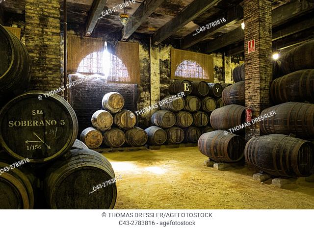 Stacked oak barrels in one of the cellars at the Bodega Gonzalez Byass in Jerez de la Frontera. Cadiz province, Andalusia, Spain