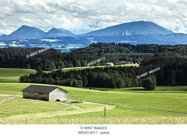 Barn in Field with Mountain Background