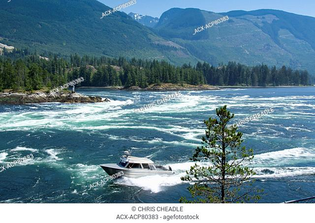 Experienced boater braves Skookumchuck Narrows, ebb tide Sechelt Inlet, Sunshine Coast, British Columbia, Canada