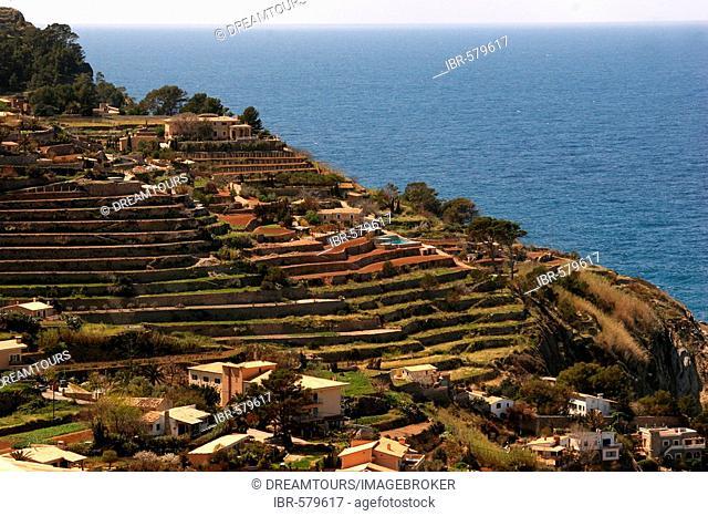 Banyalbufar, Serra de Tramuntana, Majorca, Spain, Europe