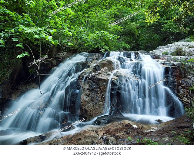 One of the many waterfalls along Gualba stream below Santa Fe dam. Springtime at Montseny Natural Park's beech forest. Barcelona province, Catalonia, Spain