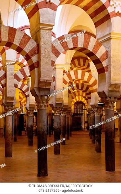 The stunning forest of pillars in Córdoba's world-famous Mezquita was completed within a year in 785. Córdoba, Córdoba province, Andalusia, Spain
