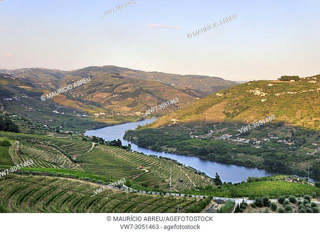 The Douro river and the terraced vineyards of the Port wine in Vila Jusã, Mesão Frio. A Unesco World Heritage site, Portugal