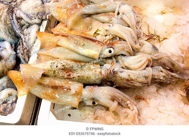 Sea fish on market stalls