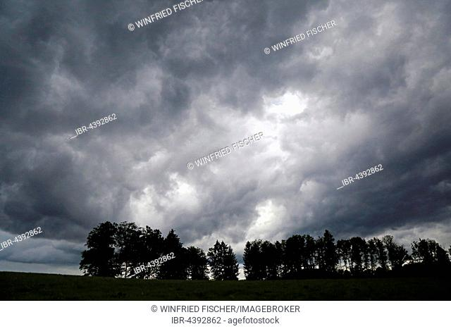Storm clouds over field and row of trees in Beuerberg, Upper Bavaria, Germany