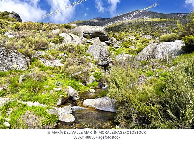 Stream at Eliza gorge in the Sierra de Gredos and Cabezo hill on the background. Avila. Spain