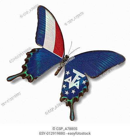 French Southern and Antarctic Lands flag on butterfly