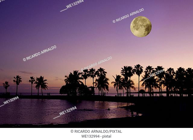 Moon Rise in Miami, Florida