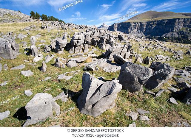 Karst rock field, Spain