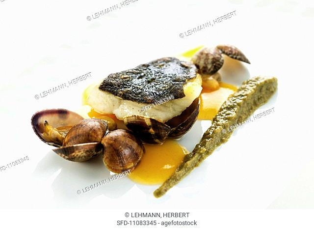 Turbot with clams and aubergine puree
