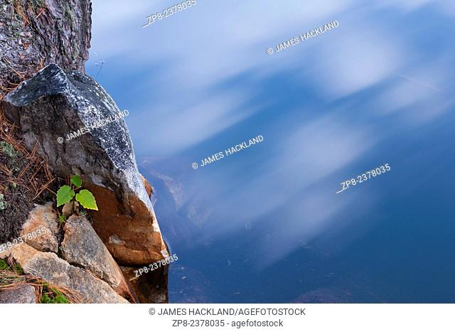 An abstract photo of a small tree sappling growing from in between the rocks with moving clouds reflected in the water. Killarney, Provincial Park, Ontario