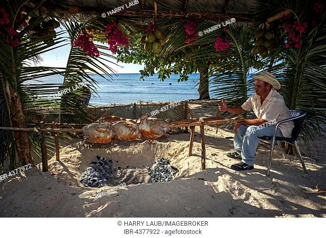 Cuban man grilling turkeys and suckling pig at the beach of Playa Ancon, near Trinidad, Sancti Spiritus Province, Cuba