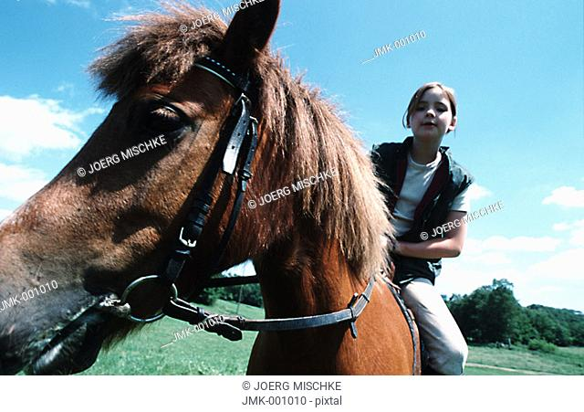 A girl riding a horse, sitting in the saddle, in the open countryside