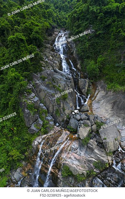 Jungle in Sun World Ba Na Hills, Danang, Vietnam, Asia