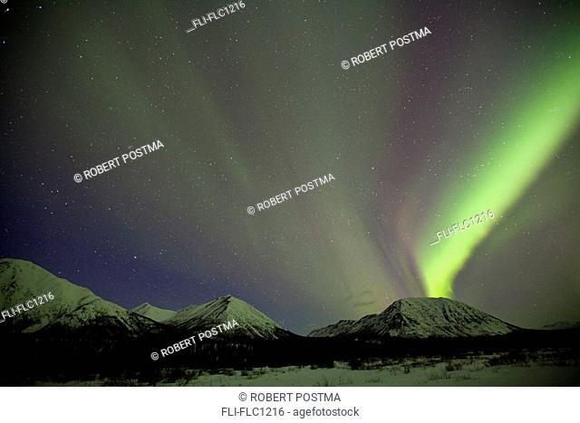 Aurora borealis or northern lights, Yukon