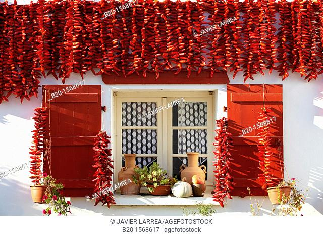 Espelette Peppers, Chili peppers left to dry at the walls of the houses, Espelette, Aquitaine, Basque Country, Pyrenees Atlantiques, 64, France