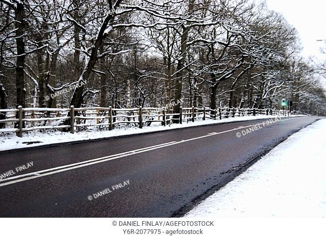 A country road in southern England, just outside London, on a snowy Winter day with a traffic light to enable horses and riders to cross over
