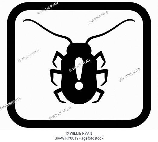 Bug on white background