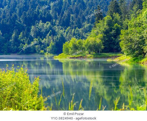 Stunning Green nature in Spring Bajer lake Fuzine in Croatia